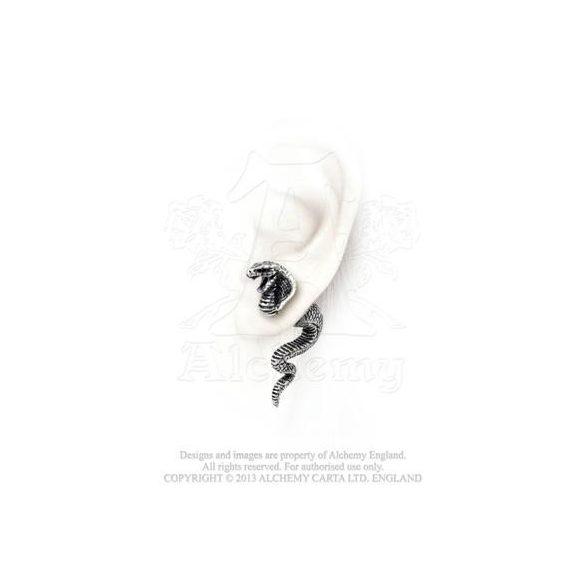 Kobra fülbevaló /db