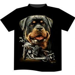 Rottweiler póló