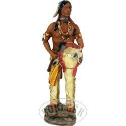 Indián tomahawkkal és pajzzsal