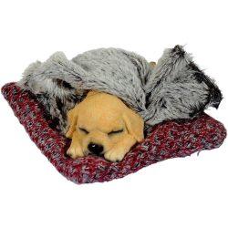 Párnán alvó kutya