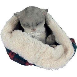 Macska a takaróban