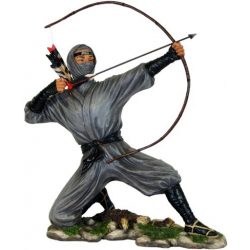 Nindzsa / Ninja