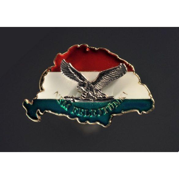 Nagy-Magyarország jelvény