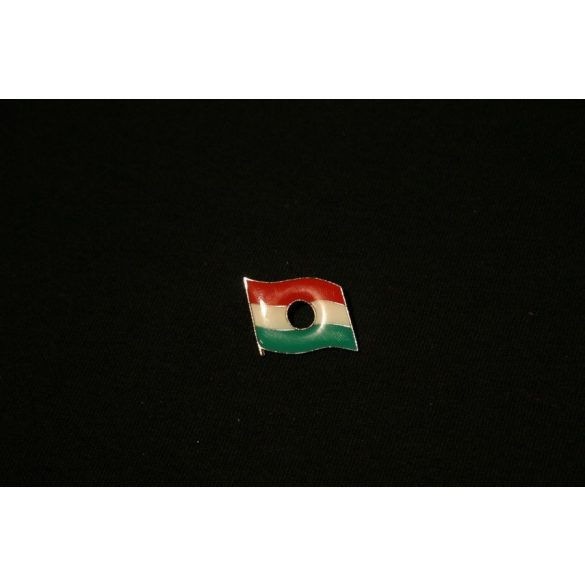 Lyukas magyar zászló jelvény
