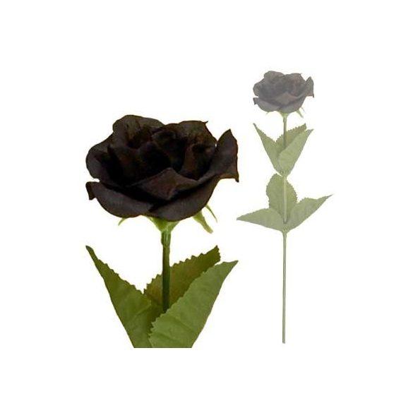 Fekete rózsaszál