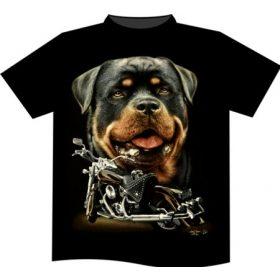 XXL t-shirts